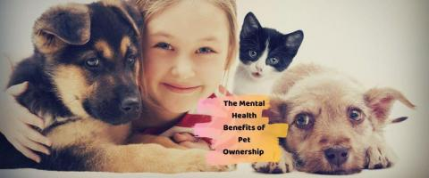mental health benefits of having a pet