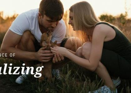 Couple playing with a puppy